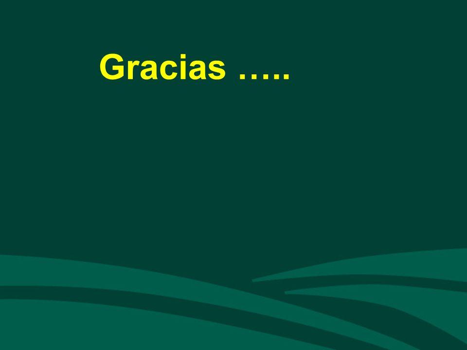 Gracias …..