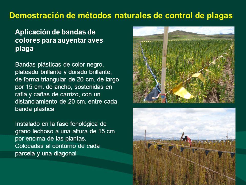 Demostración de métodos naturales de control de plagas