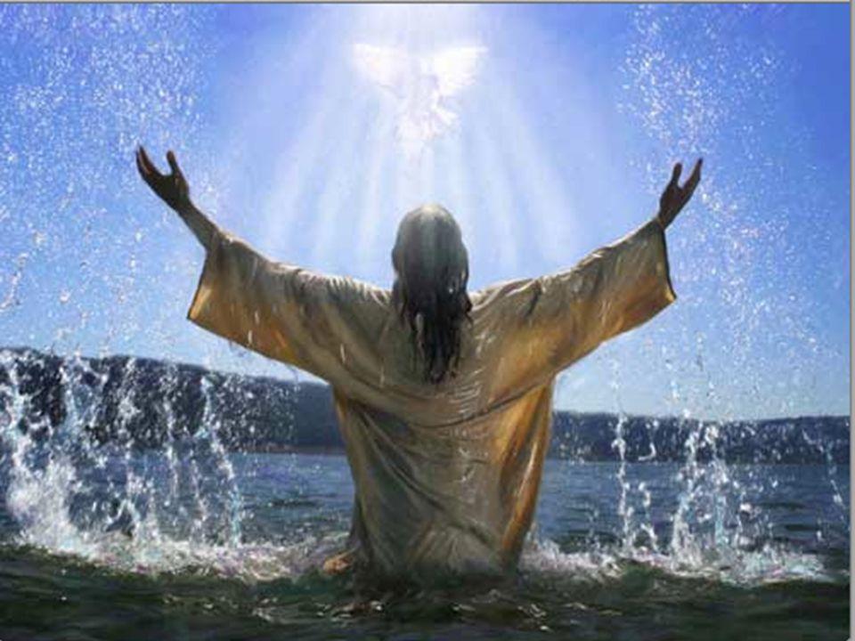 www.gnostico.jimdo.com