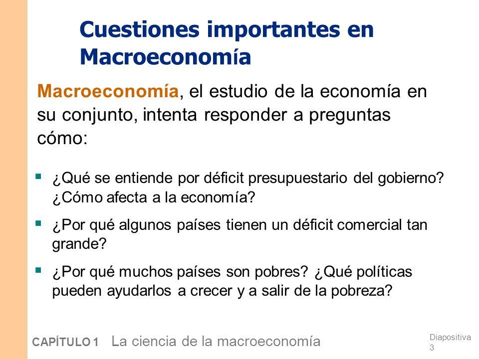 Cuestiones importantes en Macroeconomía