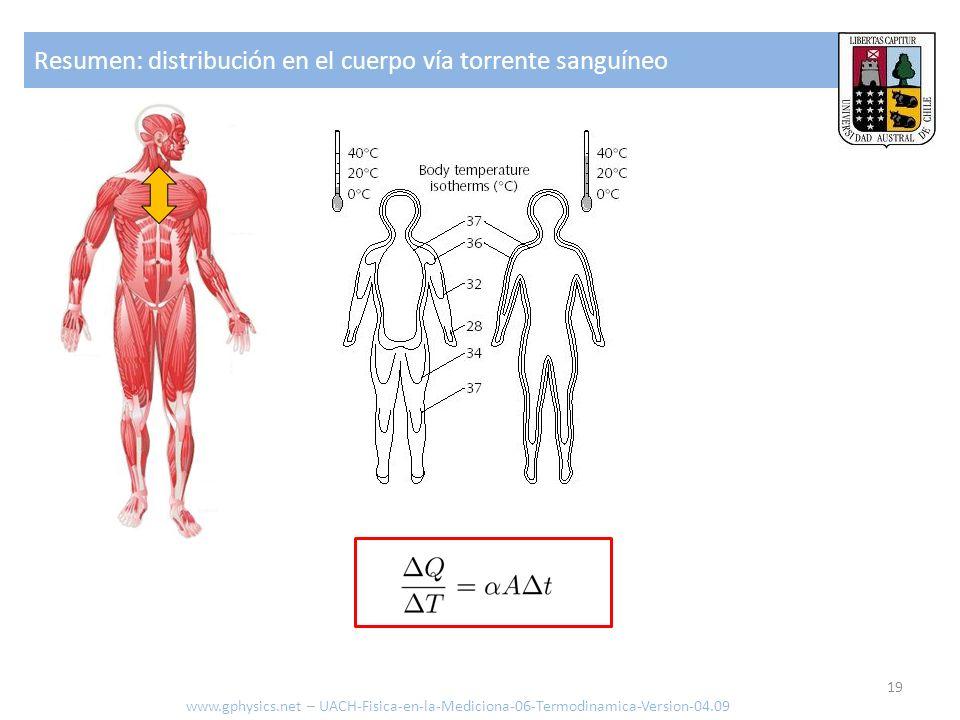 Resumen: distribución en el cuerpo vía torrente sanguíneo