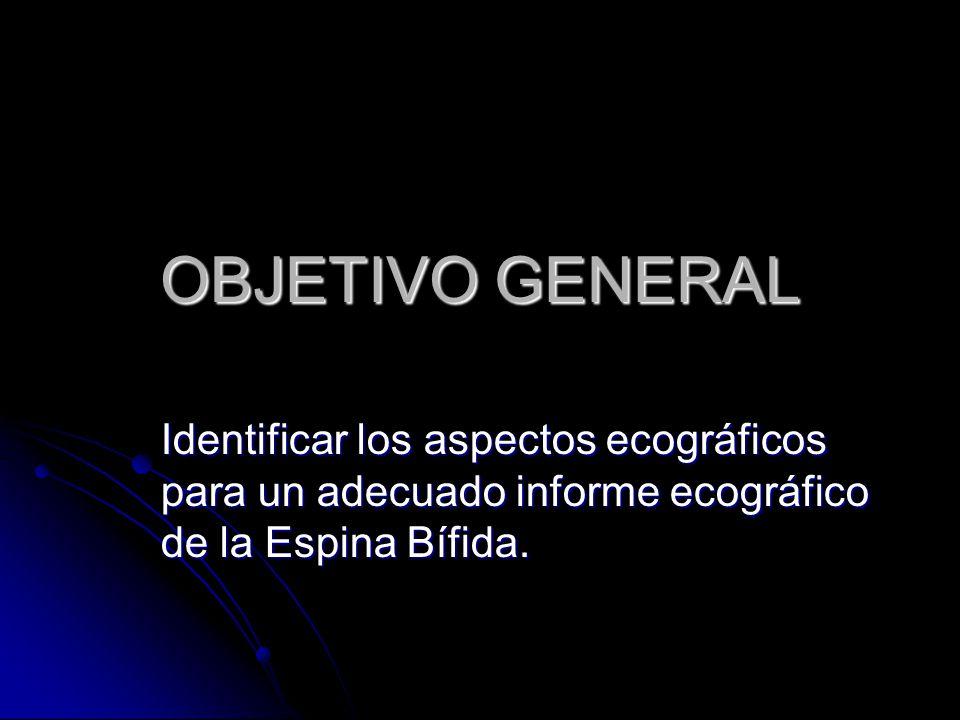 Espina b fida mielomeningocele ppt video online descargar for Objetivo general de un vivero