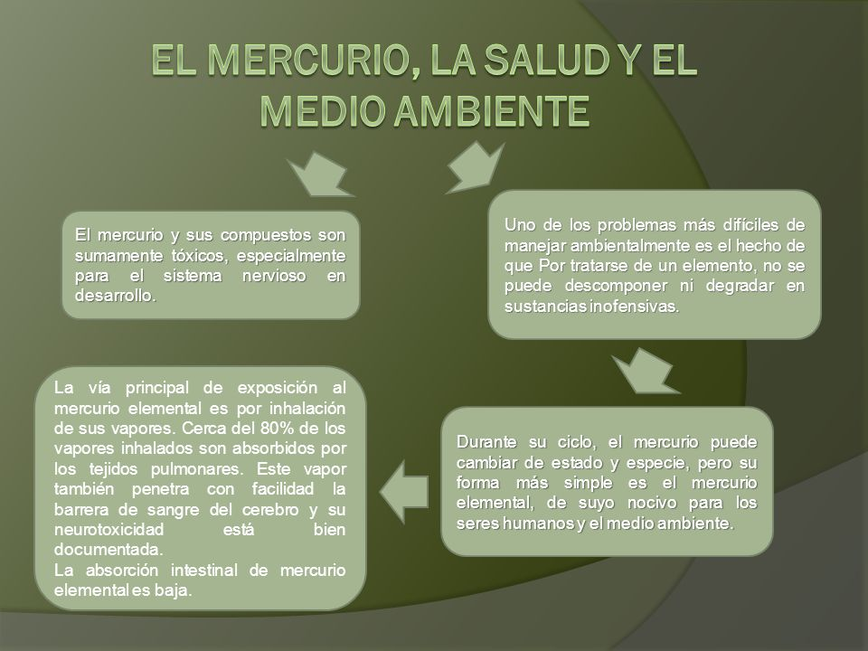 EL MERCURIO, LA SALUD Y EL MEDIO AMBIENTE
