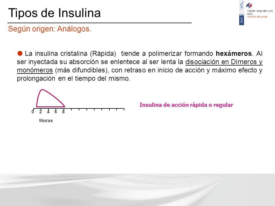 Taller de Insulina para Enfermería - ppt descargar