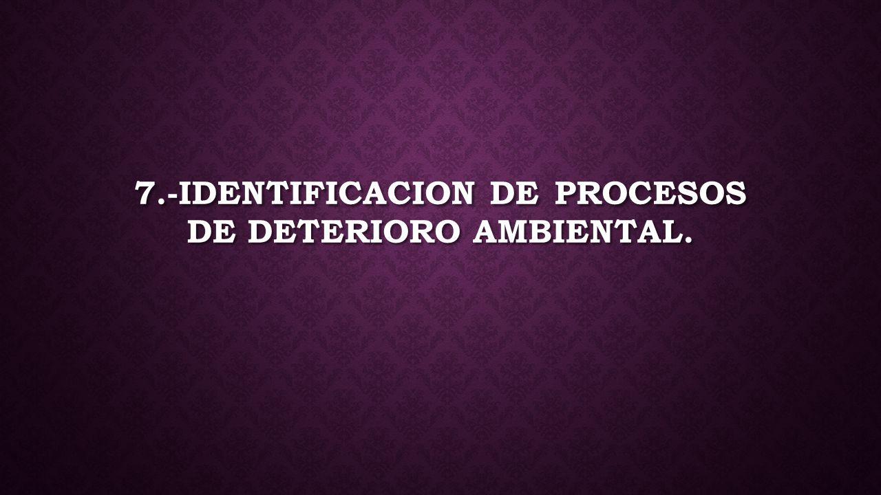 7.-IDENTIFICACION DE PROCESOS DE DETERIORO AMBIENTAL.