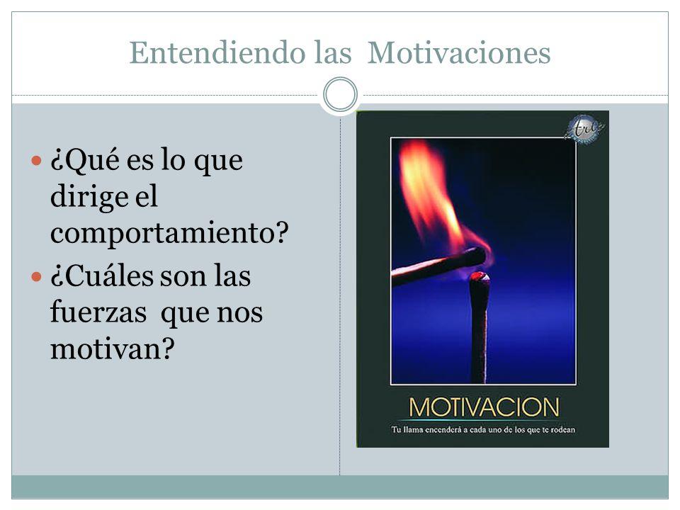 Entendiendo las Motivaciones
