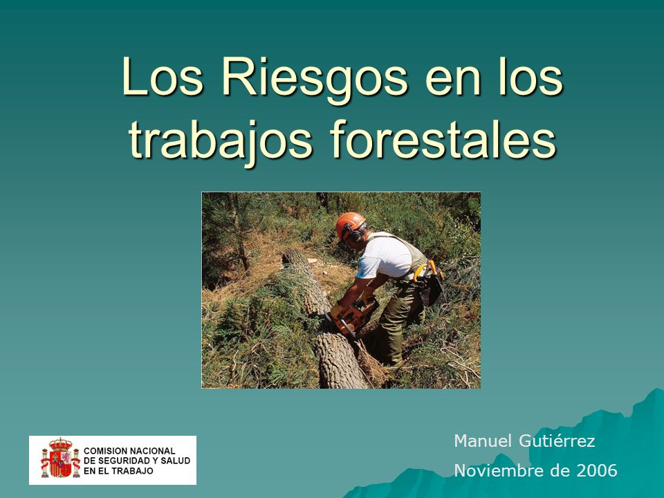 Los Riesgos en los trabajos forestales