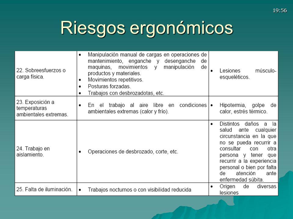 Riesgos ergonómicos