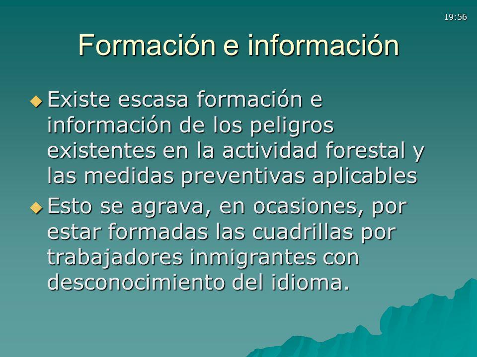 Formación e información