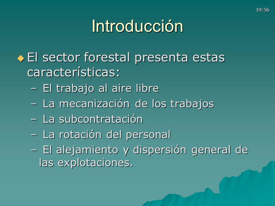 Introducción El sector forestal presenta estas características: