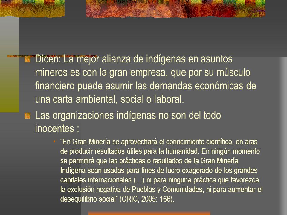 Las organizaciones indígenas no son del todo inocentes :