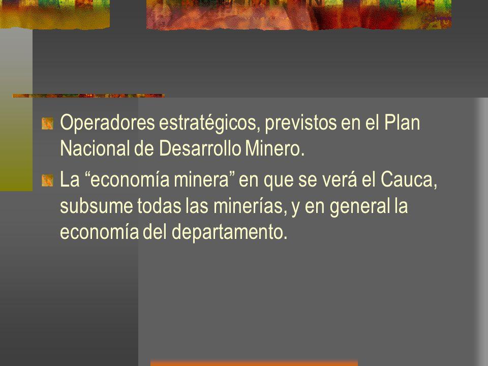 Operadores estratégicos, previstos en el Plan Nacional de Desarrollo Minero.