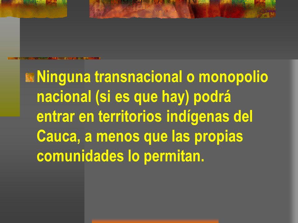 Ninguna transnacional o monopolio nacional (si es que hay) podrá entrar en territorios indígenas del Cauca, a menos que las propias comunidades lo permitan.