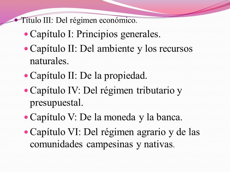 Capítulo I: Principios generales.