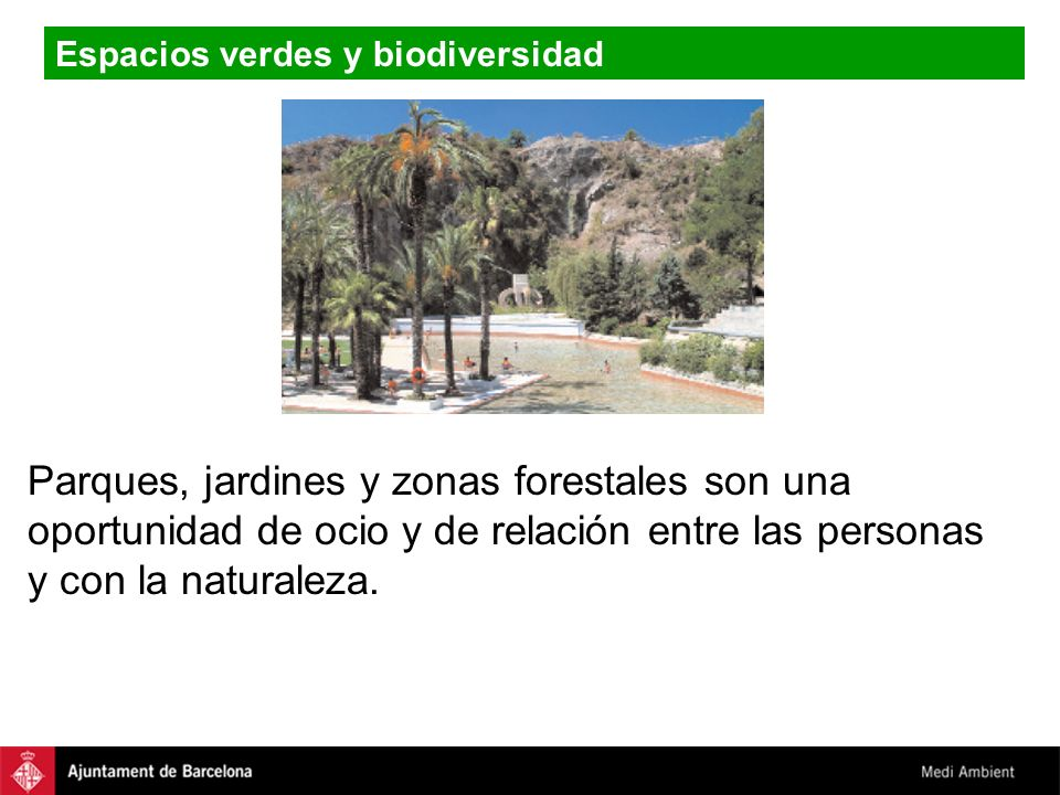 Parques, jardines y zonas forestales son una