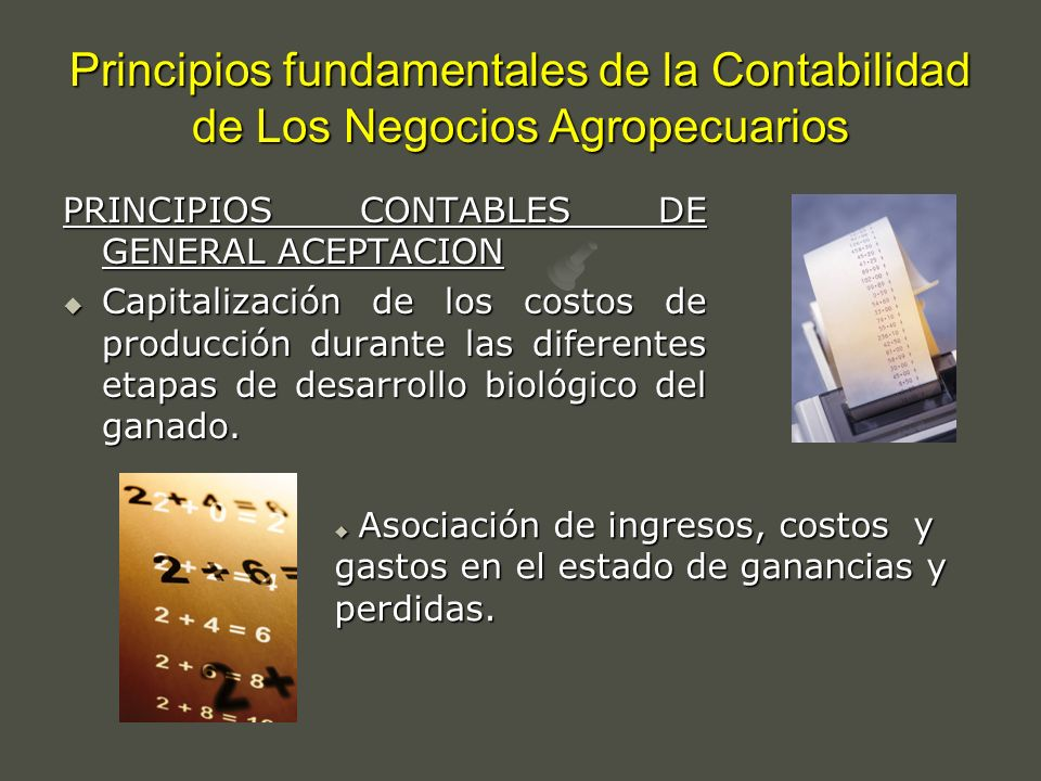 Principios fundamentales de la Contabilidad de Los Negocios Agropecuarios