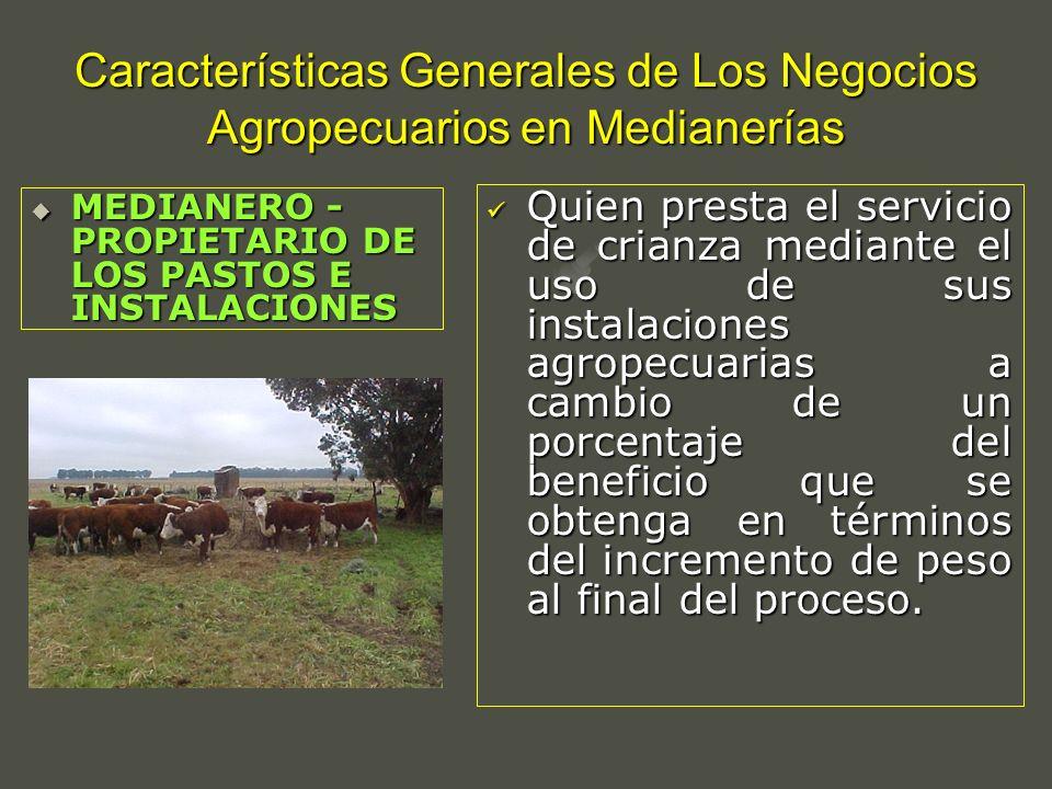 Características Generales de Los Negocios Agropecuarios en Medianerías