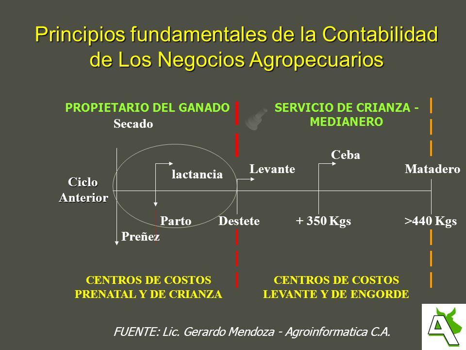SERVICIO DE CRIANZA - MEDIANERO