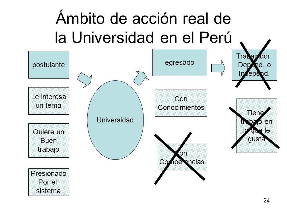 Ámbito de acción real de la Universidad en el Perú