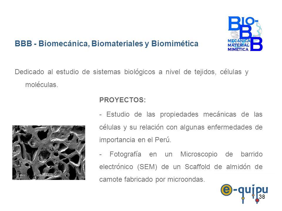 BBB - Biomecánica, Biomateriales y Biomimética