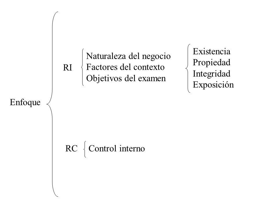 Existencia Propiedad. Integridad. Exposición. Naturaleza del negocio. Factores del contexto. Objetivos del examen.