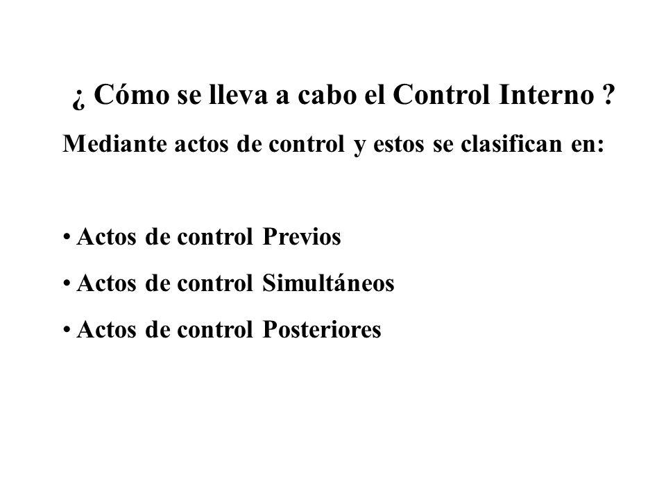 ¿ Cómo se lleva a cabo el Control Interno
