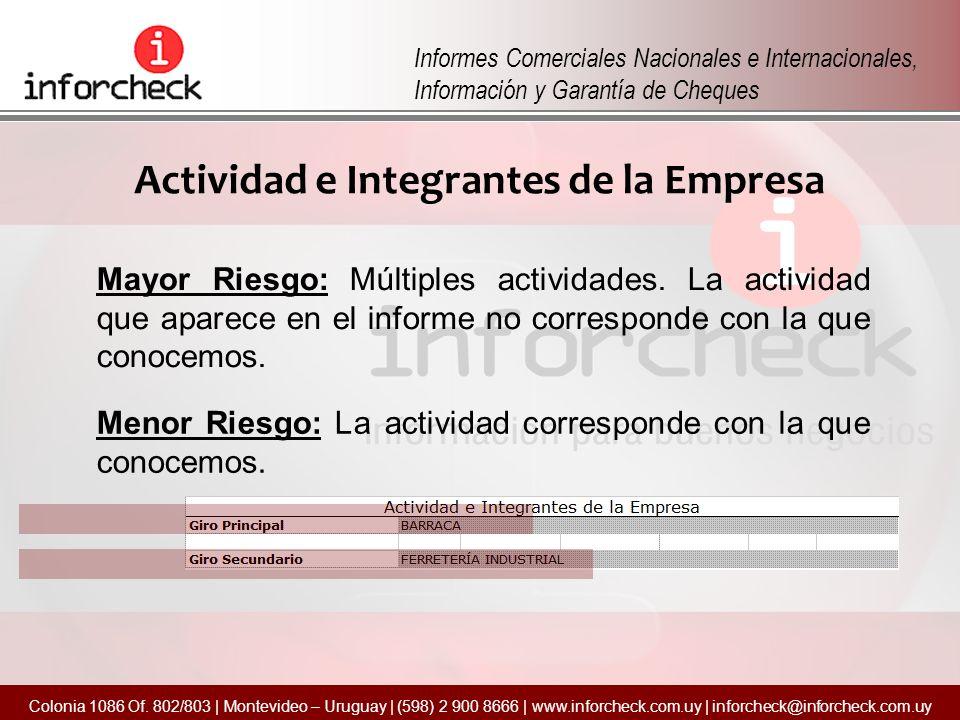 Actividad e Integrantes de la Empresa