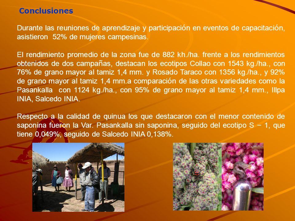 Conclusiones Durante las reuniones de aprendizaje y participación en eventos de capacitación, asistieron 52% de mujeres campesinas.