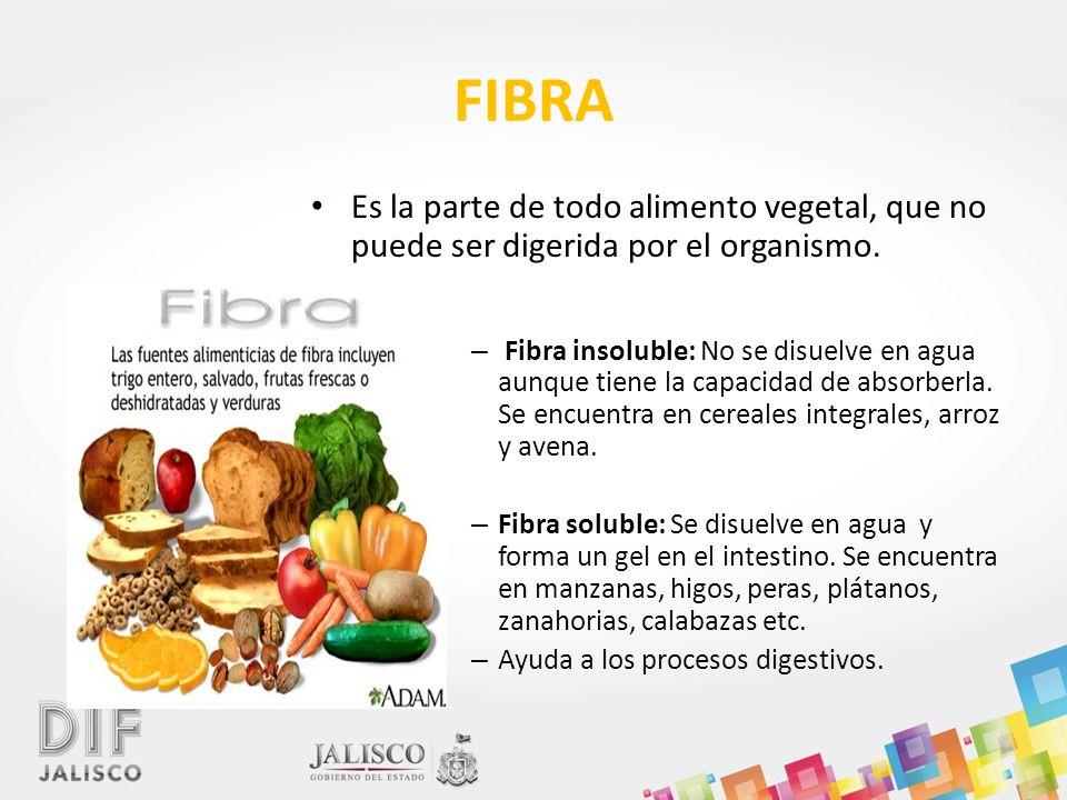 Alimentaci n correcta ppt descargar - Informacion sobre la fibra vegetal ...