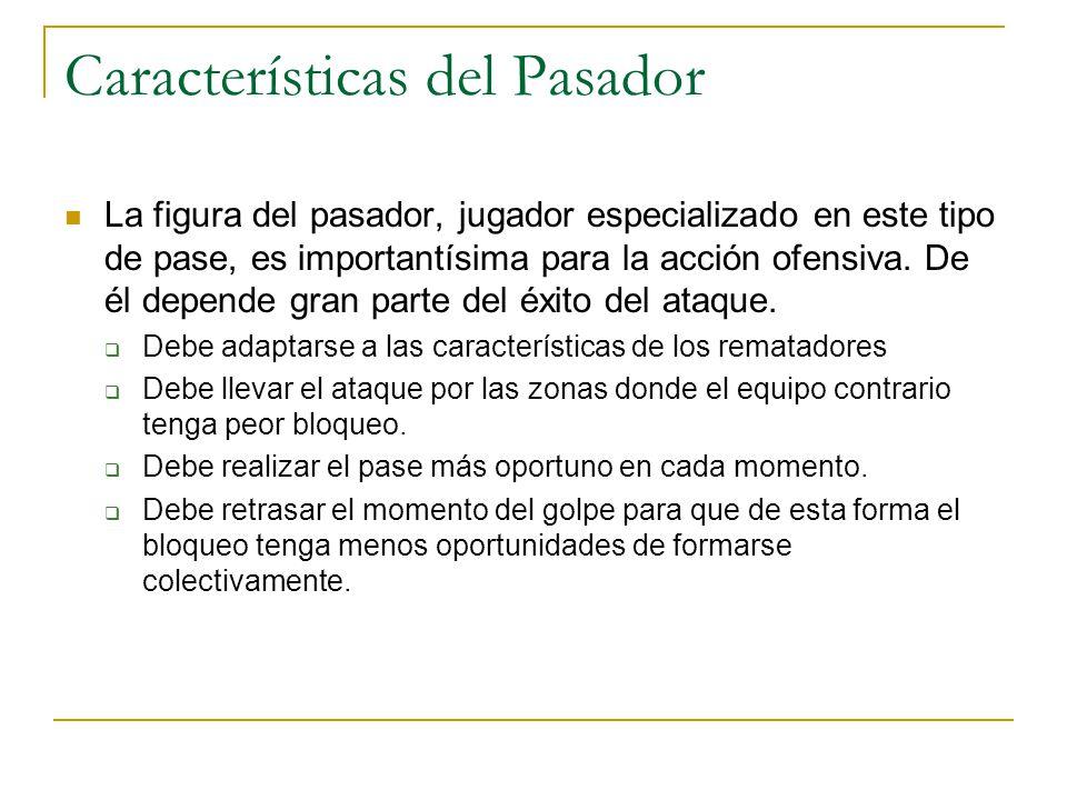 Características del Pasador