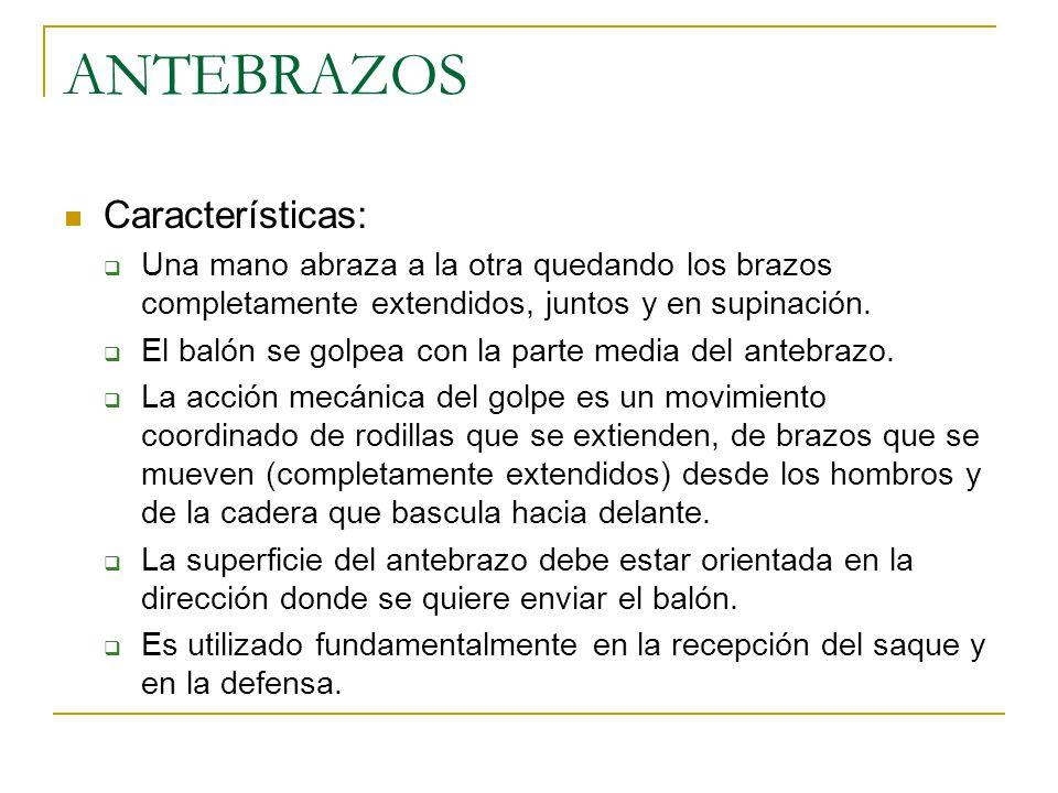 ANTEBRAZOS Características: