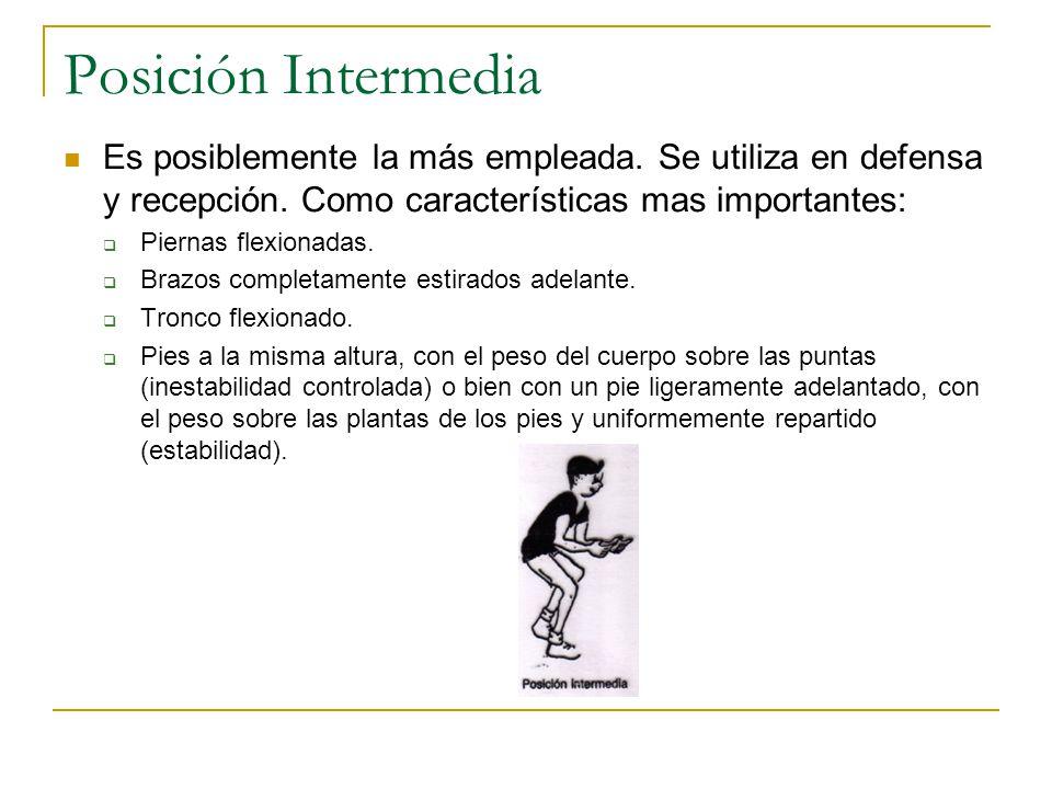 Posición Intermedia Es posiblemente la más empleada. Se utiliza en defensa y recepción. Como características mas importantes:
