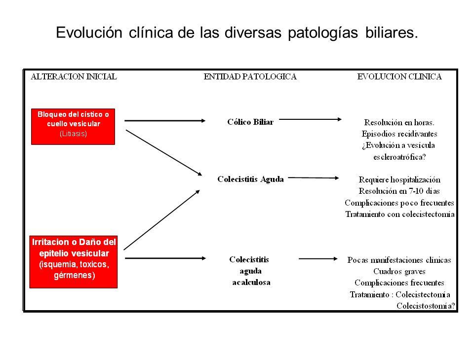 Evolución clínica de las diversas patologías biliares.