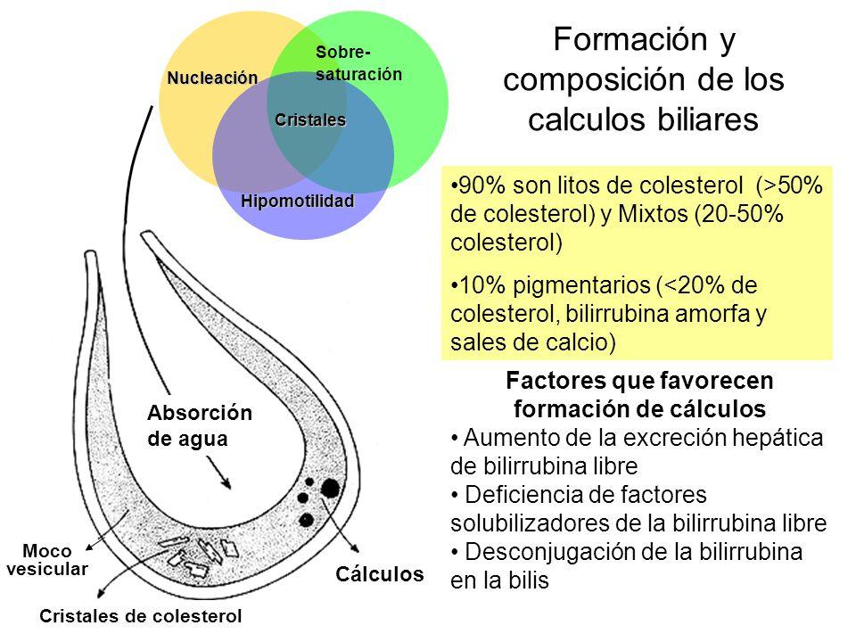 Formación y composición de los calculos biliares