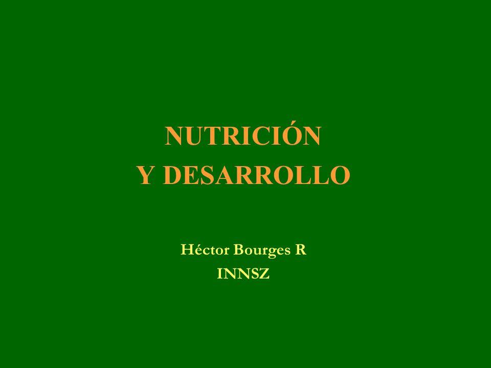 NUTRICIÓN Y DESARROLLO Héctor Bourges R INNSZ