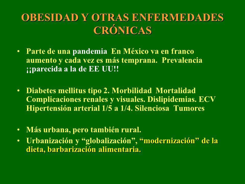 OBESIDAD Y OTRAS ENFERMEDADES CRÓNICAS