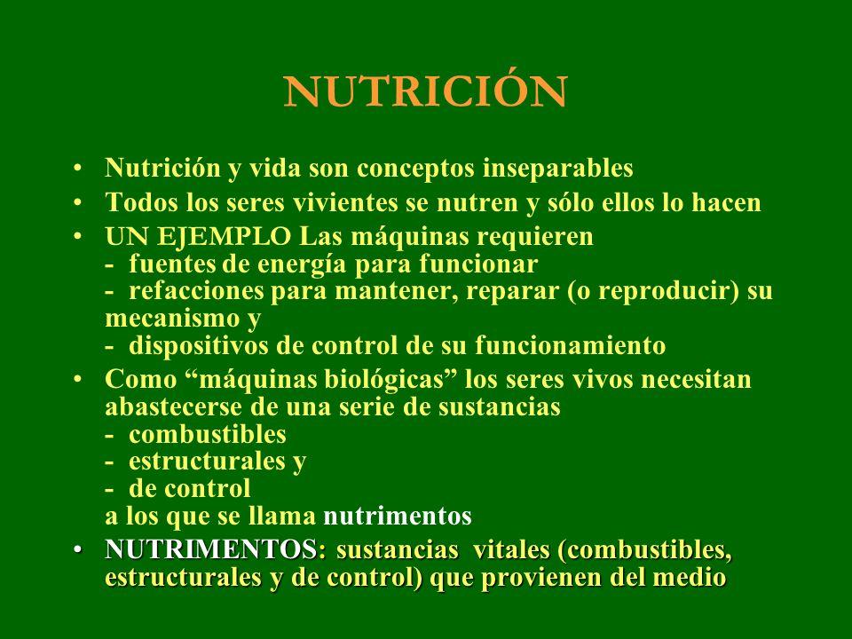 NUTRICIÓN Nutrición y vida son conceptos inseparables