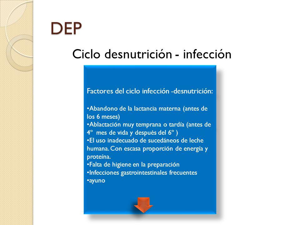 DESNUTRICIÓN ENERGÉTICO-PROTEÍNICA (DEP) - ppt descargar