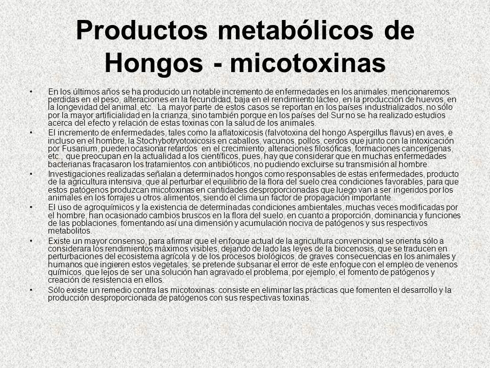 Productos metabólicos de Hongos - micotoxinas