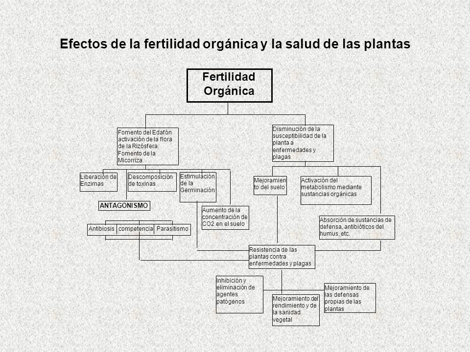 Efectos de la fertilidad orgánica y la salud de las plantas