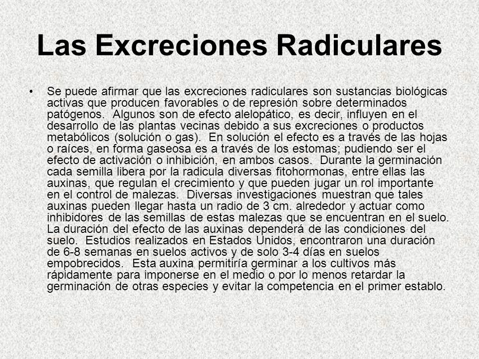 Las Excreciones Radiculares