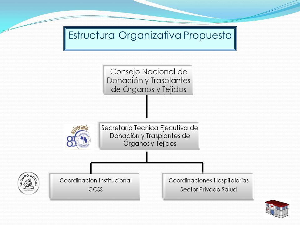 Estructura Organizativa Propuesta