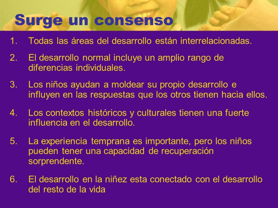 Surge un consenso Todas las áreas del desarrollo están interrelacionadas. El desarrollo normal incluye un amplio rango de diferencias individuales.