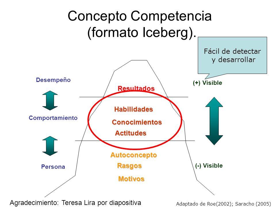 Concepto Competencia (formato Iceberg).