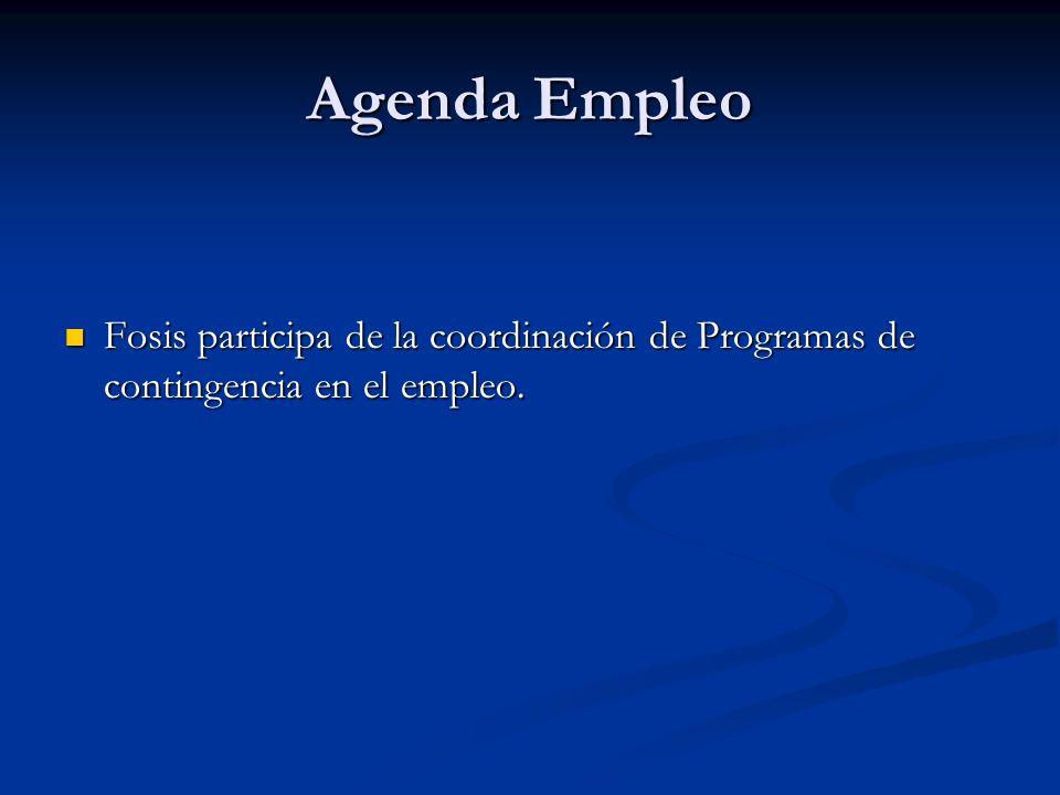 Agenda Empleo Fosis participa de la coordinación de Programas de contingencia en el empleo.