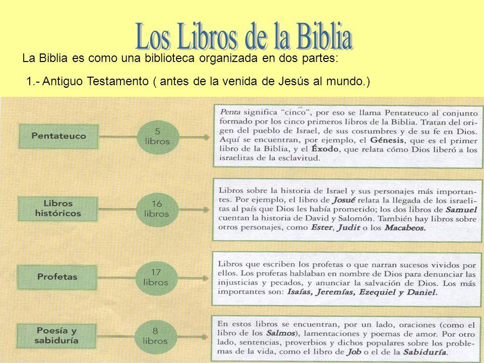 C mo se form la biblia ppt video online descargar for Partes de una biblioteca