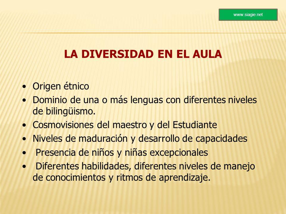 LA DIVERSIDAD EN EL AULA