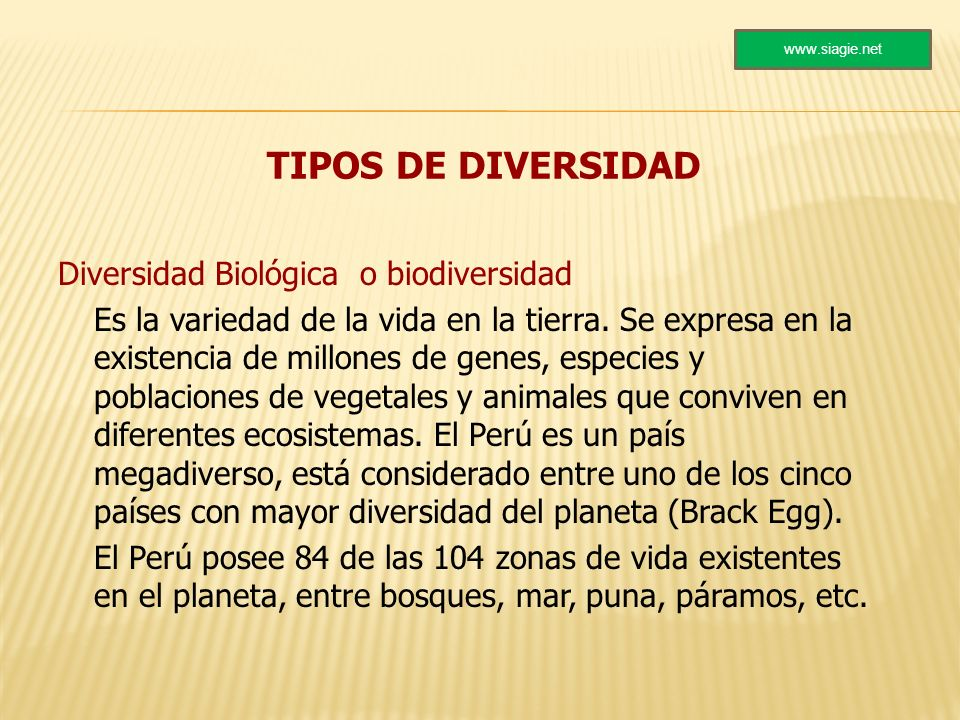 TIPOS DE DIVERSIDAD Diversidad Biológica o biodiversidad