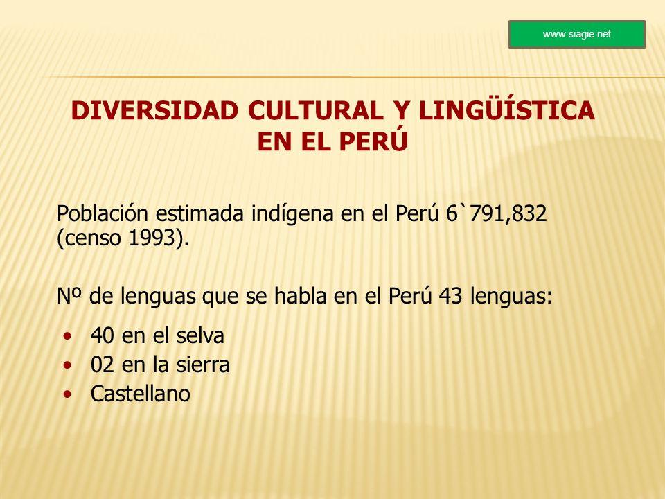 DIVERSIDAD CULTURAL Y LINGÜÍSTICA EN EL PERÚ