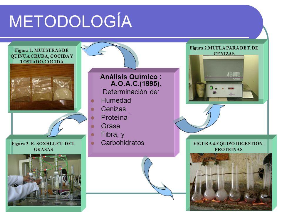 METODOLOGÍA Análisis Químico : A.O.A.C.(1995). Determinación de: